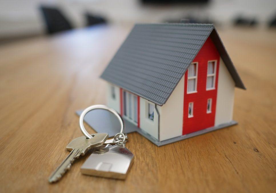 L'immobilier gagnant : Economies fiscales pour le dirigeant, revenus pour l'entreprise